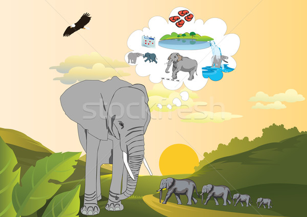 Emlék elefánt gyerekek Stock fotó © MichalEyal