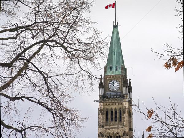 Symbol parlament niebo zimą Zdjęcia stock © michelloiselle