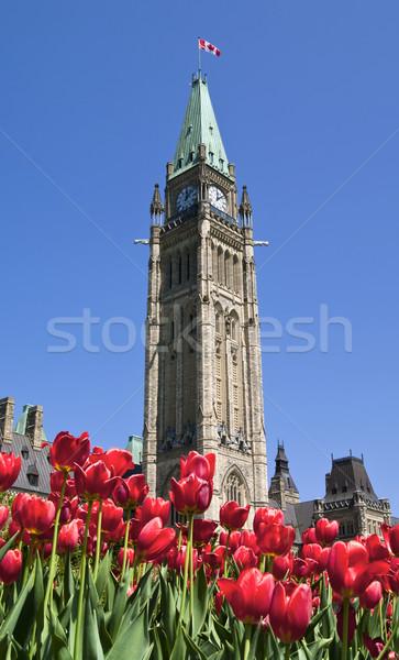 Spring Parliament Stock photo © michelloiselle