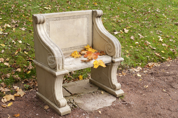 stone park bench with colorful autumn leaves Stock photo © michey
