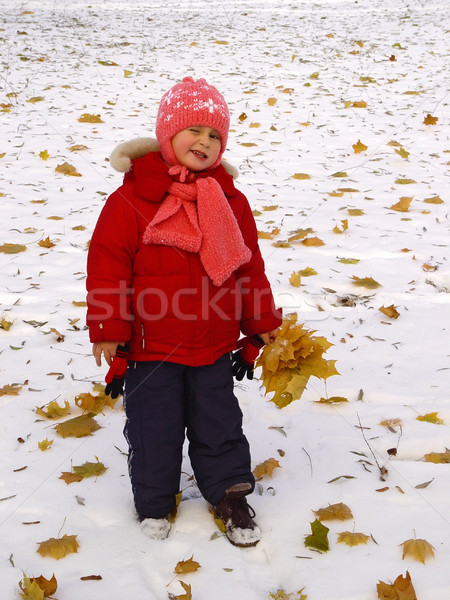 Little girl with autumn leaves at winter Stock photo © michey