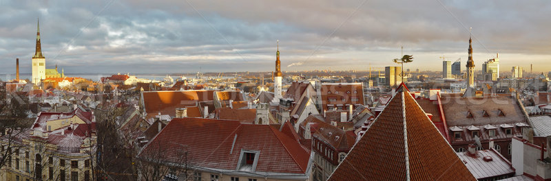 panoramic view of Tallinn, Estonia at sunset Stock photo © michey