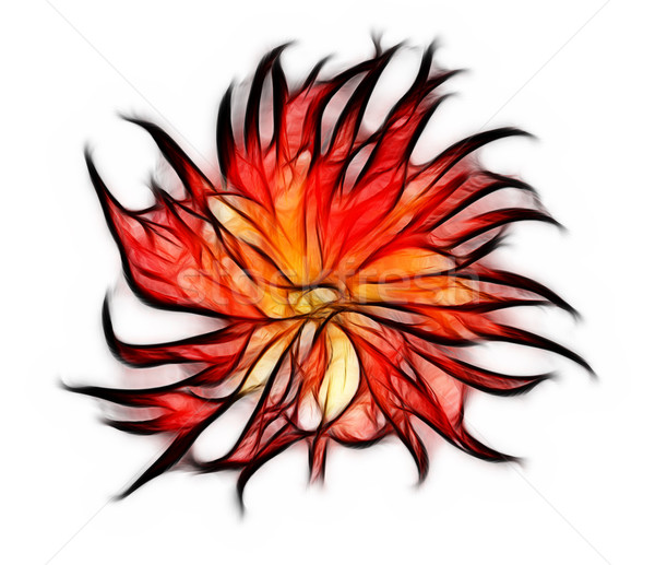 Fractal Rood dahlia bloem abstract behang Stockfoto © michey