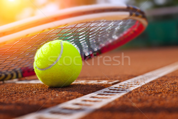 tennis ball on a tennis court Stock photo © mikdam