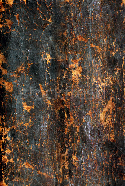 colored grunge background Stock photo © mikdam