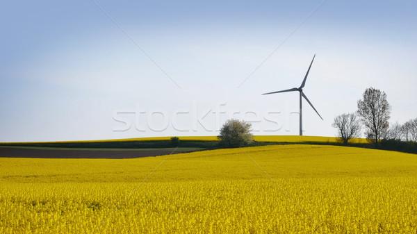Szélturbinák Svédország nyár zöld energia felhő Stock fotó © mikdam