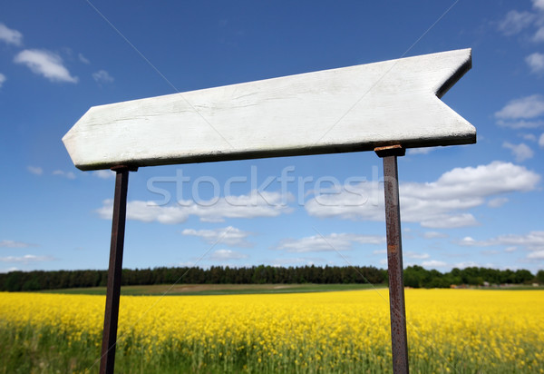 empty wooden sign Stock photo © mikdam