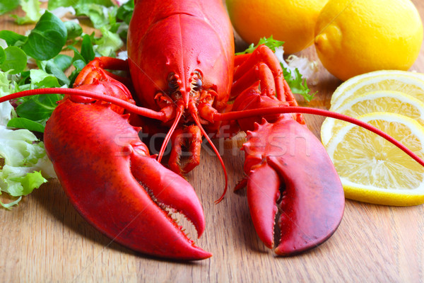boiled lobster Stock photo © mikdam
