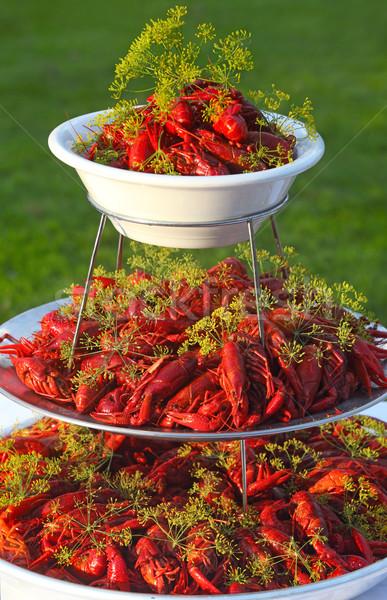 Cena rosso pasto Foto d'archivio © mikdam