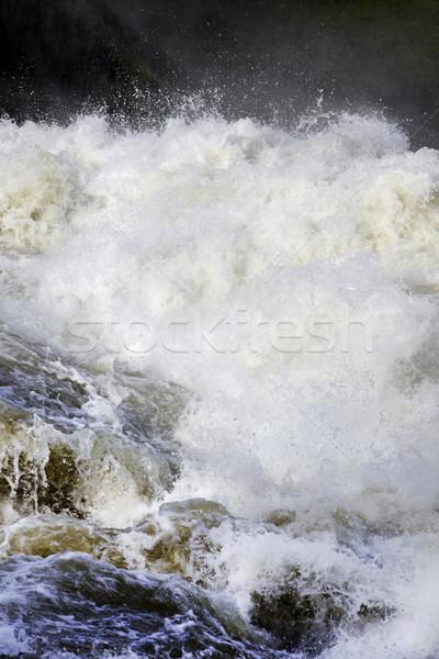Rushing Water Stock photo © mikdam
