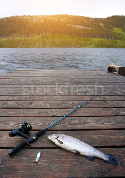 Freshly caught salmon lying on the footbridge with fishing Stock photo © mikdam