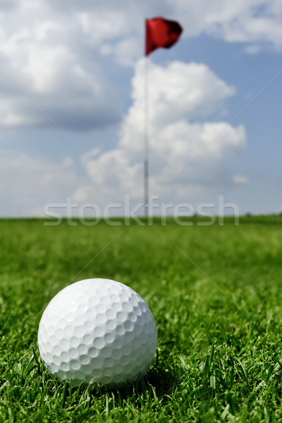golf ball and flag Stock photo © mikdam