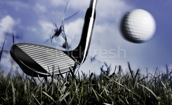 Golf club and ball in grass Stock photo © mikdam