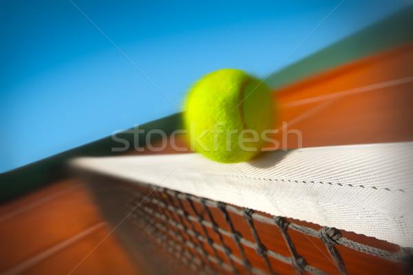 Piłka tenisowa netto sportu zdrowia tle zielone Zdjęcia stock © mikdam