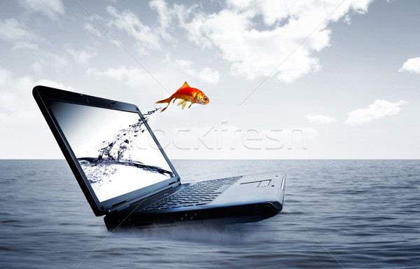 Goldfish jump out of the monitor Stock photo © mikdam