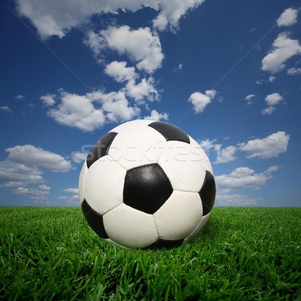 Voetbal gras Stockfoto © mikdam