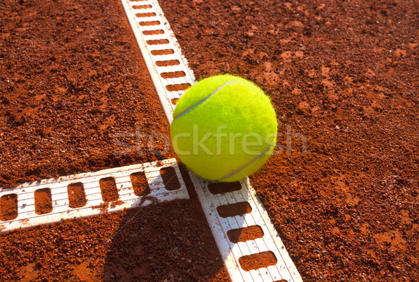 tennis ball Stock photo © mikdam
