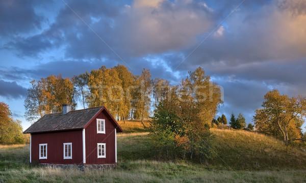 öreg fából készült ház Svédország szeretet fű Stock fotó © mikdam