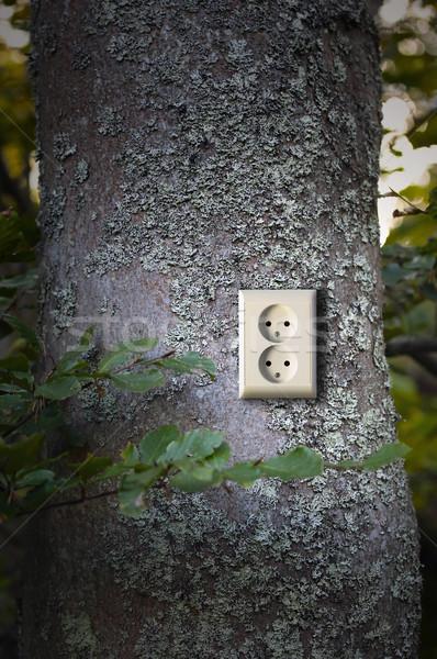 Green energy Stock photo © mikdam