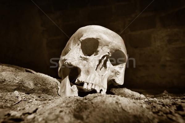Human skull  in prisoner Stock photo © mikdam
