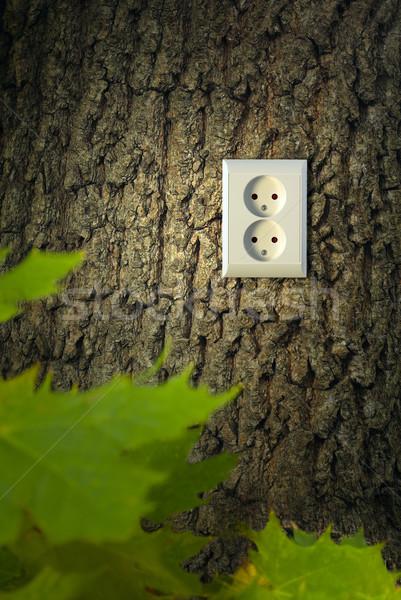 Zöld energia energia szín növény elektromosság elektromos Stock fotó © mikdam