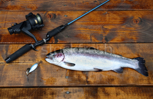 Freshly caught salmon lying on the footbridge with fishing rod Stock photo © mikdam