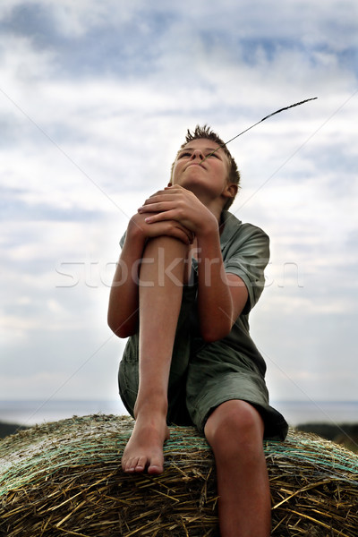 13 years old boy on a  Bale of Hay in Field in Summer Stock photo © mikdam
