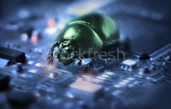 Bug on a computer chip Stock photo © mikdam