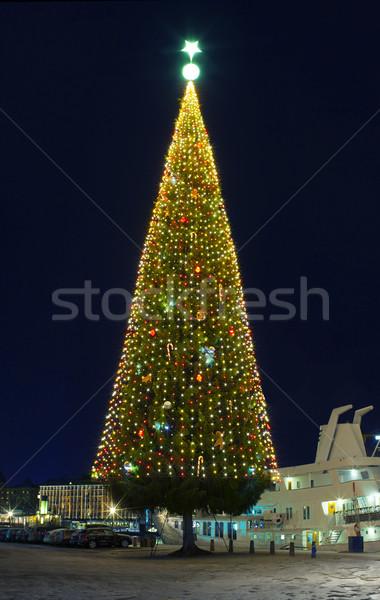 A large Christmas tree Stock photo © mikdam