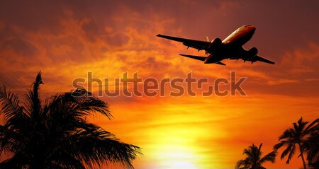 Airplane above the clouds Stock photo © mikdam