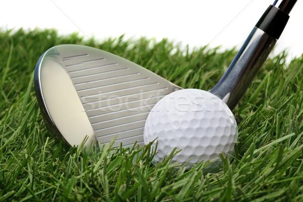 Golf ball in grass Stock photo © mikdam