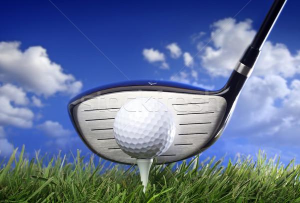 Golf klub labda fű sport képzés Stock fotó © mikdam