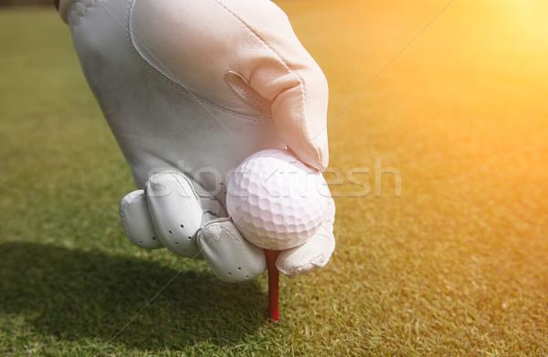 Golfball grama golfe fundos buraco campo de golfe Foto stock © mikdam