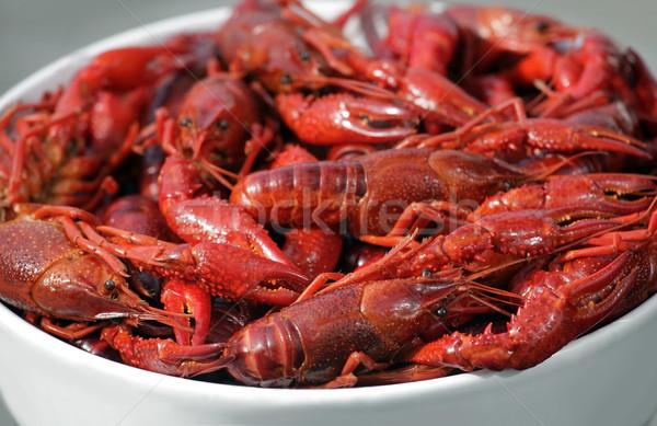 Boiled crawfish Stock photo © mikdam