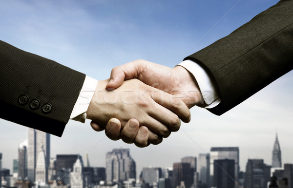 Business handshake  Stock photo © mikdam