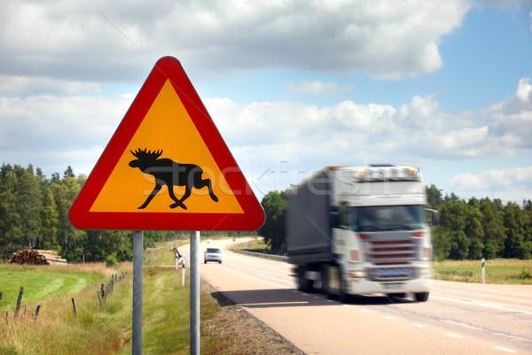 Eland teken snelweg dier verkeersbord Stockfoto © mikdam