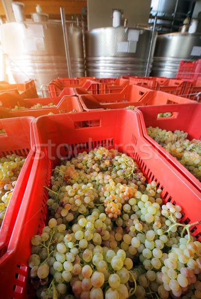 Druiven fermentatie roestvrij staal industrie fabriek Stockfoto © mikdam