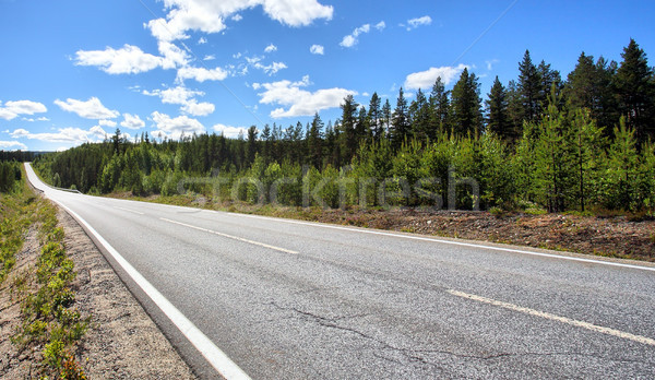 Country Highway Stock photo © mikdam