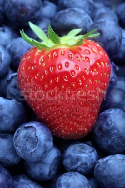 Morangos mirtilos fruto texturas morango fundos Foto stock © mikdam