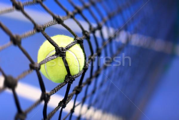 теннисный мяч теннисный корт спорт весело мяча черный Сток-фото © mikdam