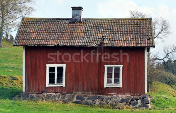 заброшенный дома окна крыши опасность пусто Сток-фото © mikdam