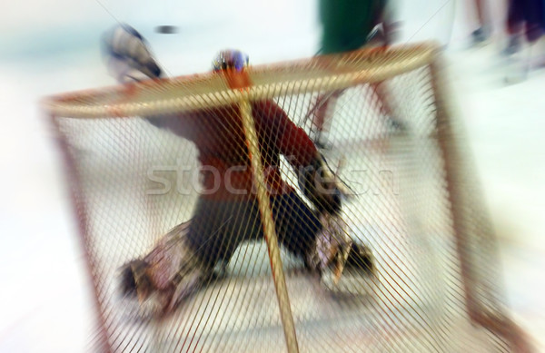 Gant mettre gardien de but glace hockey Photo stock © mikdam