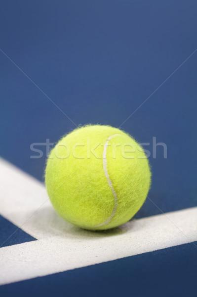 Teniszlabda teniszpálya sport tenisz labda fehér Stock fotó © mikdam