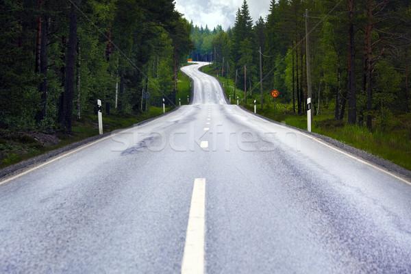 Vidéki út út nyár erdő Stock fotó © mikdam