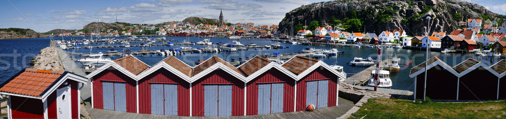 Marina pêche village ouest côte panorama Photo stock © mikdam