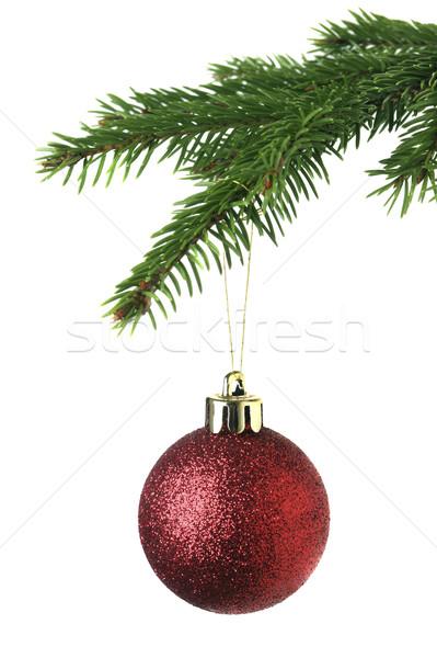 Christmas ornament on the tree Stock photo © mikdam