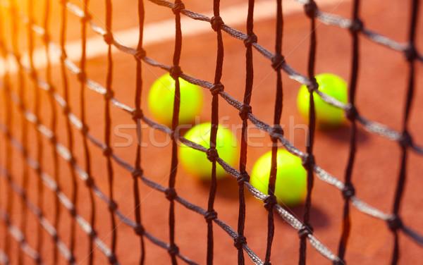 tennis ball on a tennis court Stock photo © mikdam