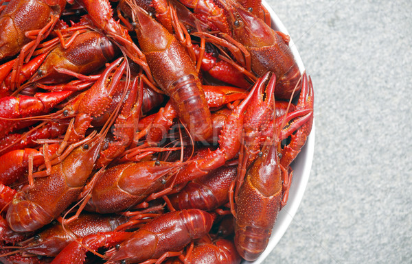 Boiled crawfish viewed from above Stock photo © mikdam