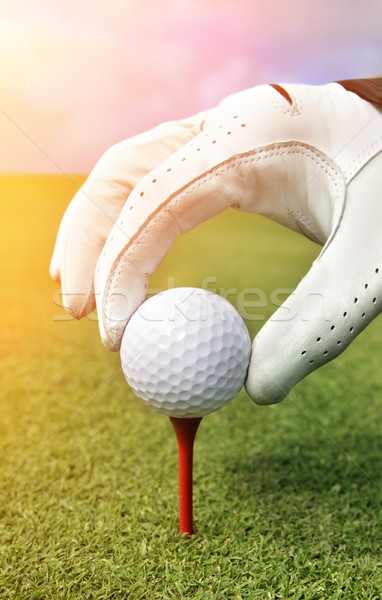 Placing golf ball on a tee  Stock photo © mikdam