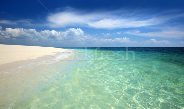 tropical beach Stock photo © mikdam